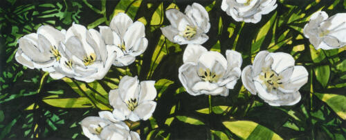 Peer_24x60WhiteTulipStudy