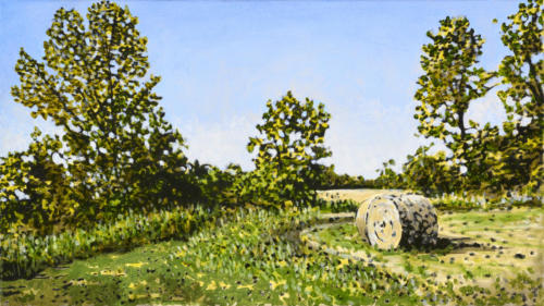 "Otonabee Twp. Field 14x23"" SOLD"