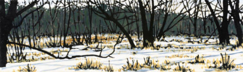 "Winter Old Norwood Rd 12x40"" SOLD"