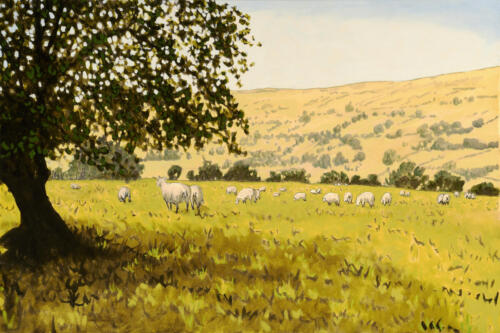 Yorkshire Landscape With Sheep 24x36 $2000.